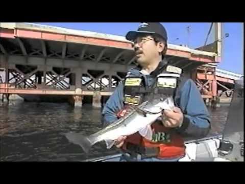 TOKYO BAY SEABASS GAME 1