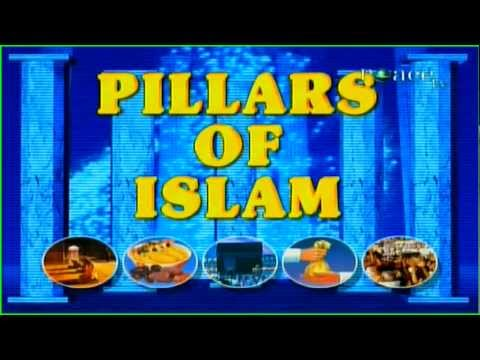 Similarities Between Pillars Of Islam & Hinduism By Dr Zakir Naik