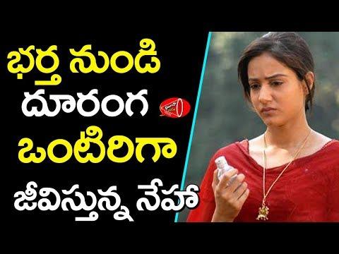 పాపం హీరోయిన్ నేహా పరిస్థితి దుర్భరం | Worst Position of Dil Movie Heroine Neha Bamb | Gossip Adda