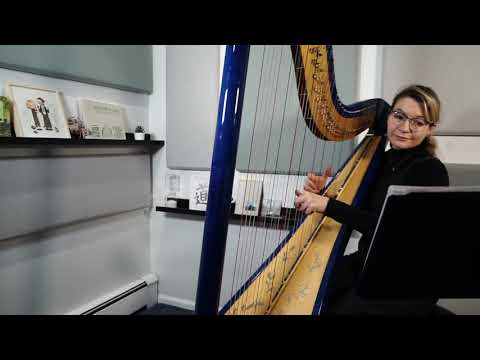 ed-sheeran---perfect---harp-cover