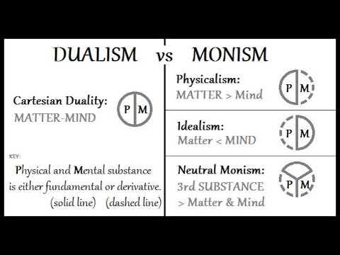 Double-aspect theory