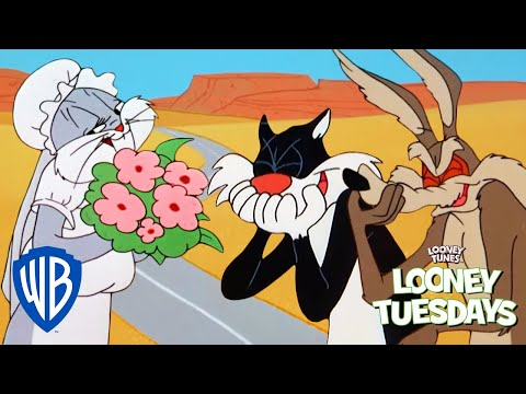 Looney Tuesdays   Who is the Greatest Trickster?   Looney Tunes   WB Kids