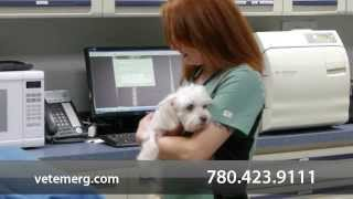 Welcome to VetEmerg - North Edmonton Emergency Veterinary Hospital