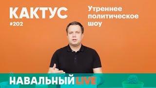 YouTube заблокировал ролик Навального, всероссийская акция 28.01 состоится, а до выборов бить нельзя
