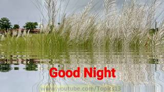 Good Night SMS Video   Good Night Whatsapp Message    Good Night Message   Good Night SMS