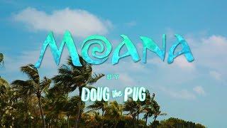 Doug The Pug  Moana