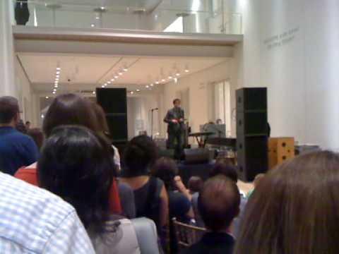 Andrew Bird- Art Institute of Chicago