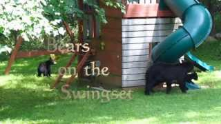 Bears On The Playset - Babies Slide And Swing