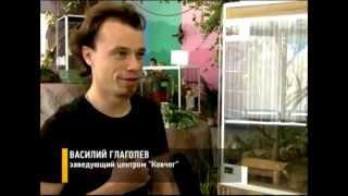 видео Редких рептилий привезли в Московкий Зоопарк