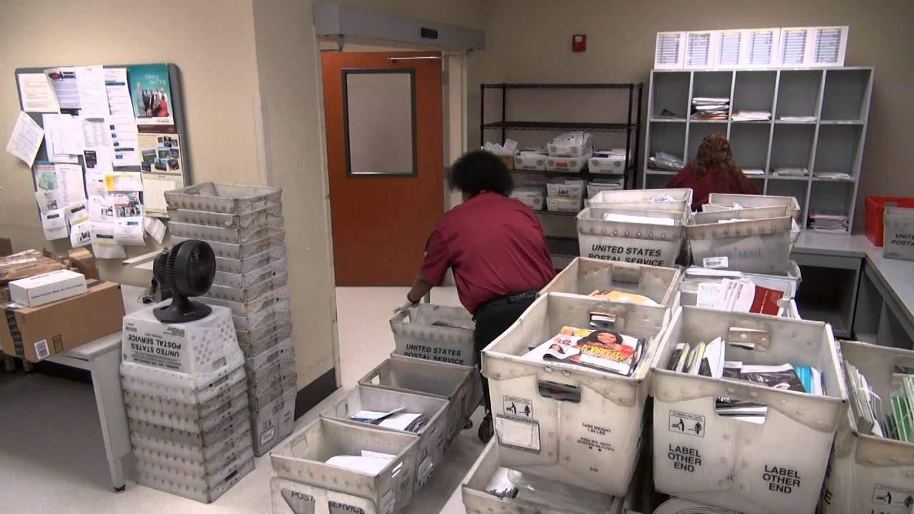 Follow the letter: The inner workings of a hospital\'s busy mailroom ...