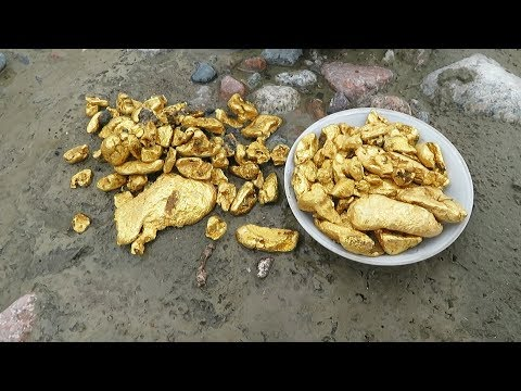 Gold rush! Mud streams freed big pieces of gold on this river right under your feet!!! SO MANY