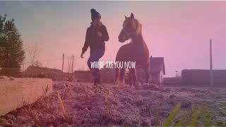 Where are you now || New Horse ♥