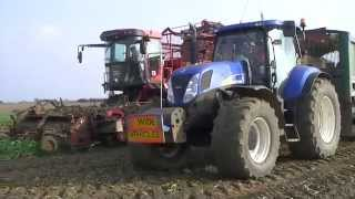 Holmer T3, Sugar Beet lifting, Norfolk, September 2014