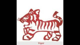 Chinese Tiger  Horoscope Overview For 2017