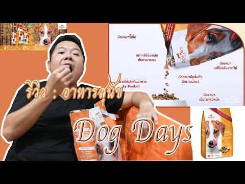 รีวิว : อาหารสุนัขยี่ห้อ dog day