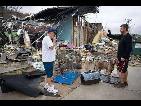 Hurricane Michael death toll rises to 6