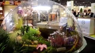 Repeat youtube video SIAL 2016 Paris - Sfera transparenta prezentare stupi