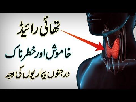 Symptoms And Causes Of Thyroid Diseases || Thyroid Gland Function || In Urdu/Hindi