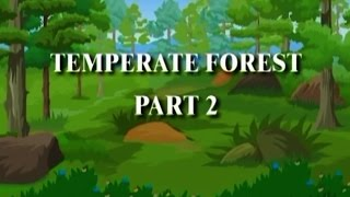 Temperate Forest Biomes Episode 02