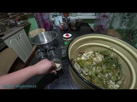 Как правильно хранить грузди соленые, в домашних условиях//Семья Жуковых