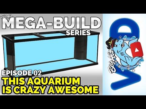 Mega-Build Series Ep 02 - This Aquarium is Crazy Awesome | BigAlsPets.com