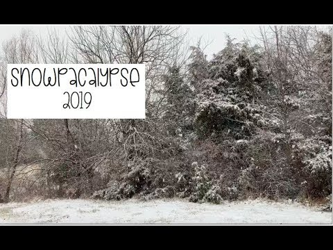 Teacher Vlog | 2019 - Episode 3 | Snowpacalypse 2019