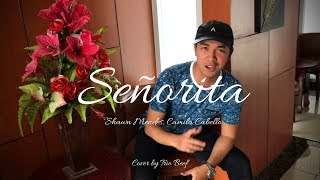 Shawn Mendes, Camila Cabello - Señorita Cover by Trio Beef