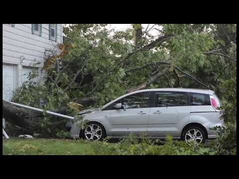 Storm damage in North Providence
