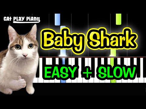 Baby Shark - Piano Tutorial Easy SLOW + Free Sheet Music PDF thumbnail