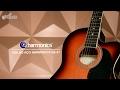 Review Harmonics | Violão Eletroacústico GE-21