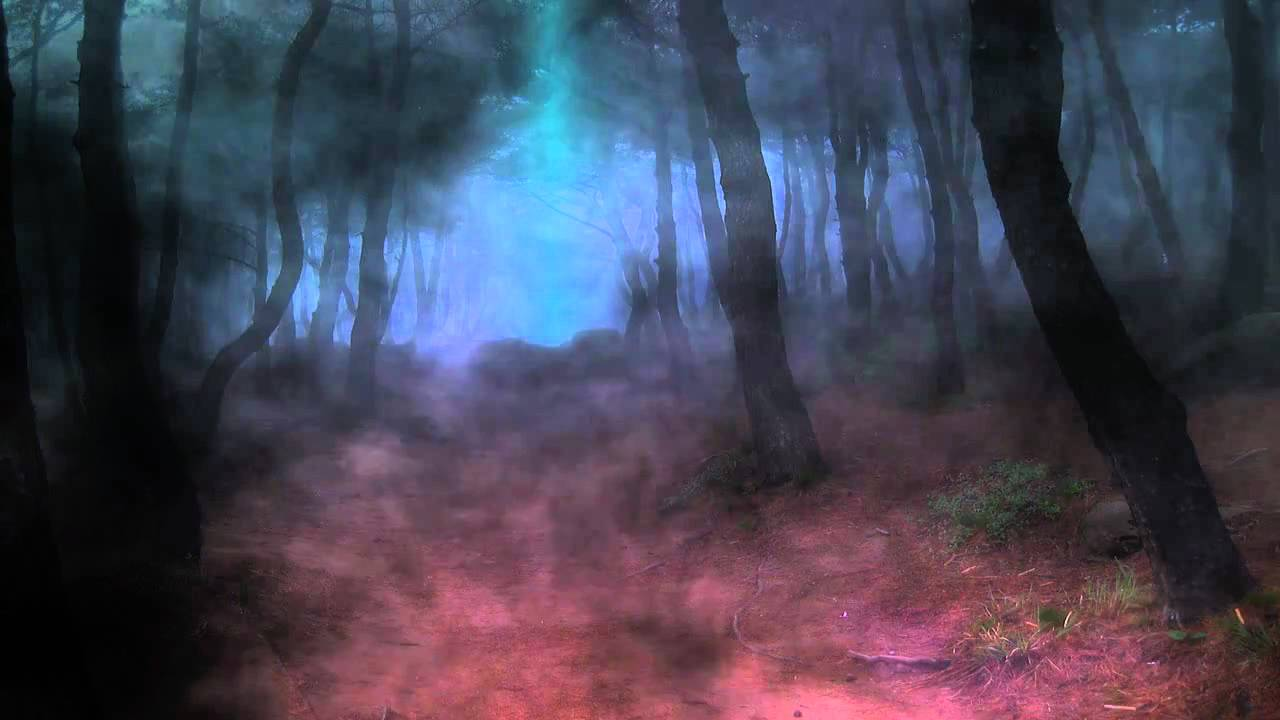 Dreamscene Animated Wallpaper Windows 7 Dark Forest Video Designed By Dreamscene Org Youtube
