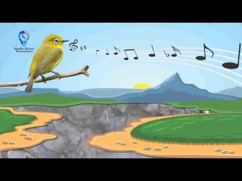 Kicau Burung Pleci dengan Suara Air Mengalir #1