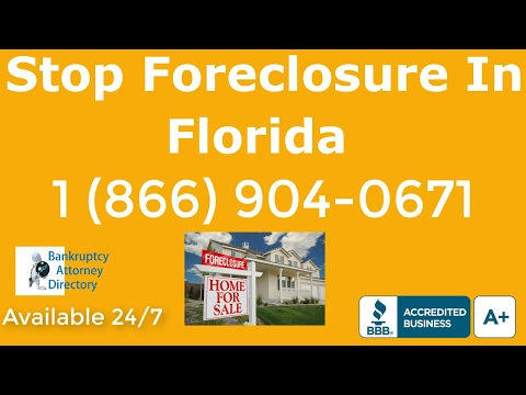 Bankruptcy Lawyers Tampa FL|(866)904-0671|Attorney|Attorneys|Lawyer|Chapter 13|Chapter 7