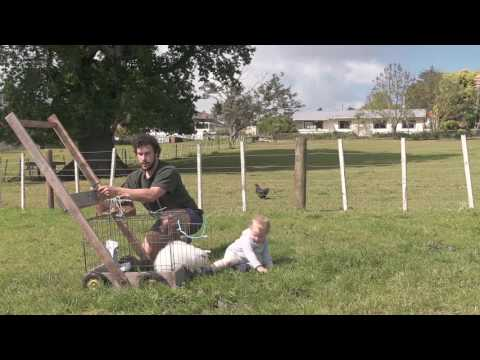 New Zealand TV ad from ASB Bank - A boy and his sheep from YouTube · Duration:  1 minutes 1 seconds