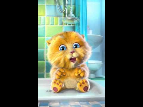 Talking ginger warm kitty soft kitty little ball of fur happy kitty sleepy kitty purr purr purr