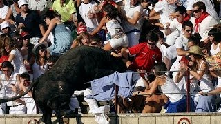 Spain Rampage Raging bull charges into crowd injuring 40 at bullfight