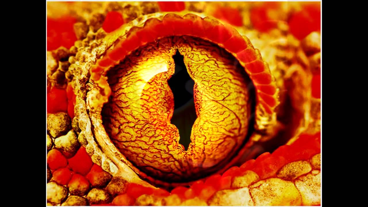 картинки глаза дракона