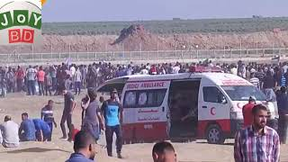 Palestine protest Gaza Israel