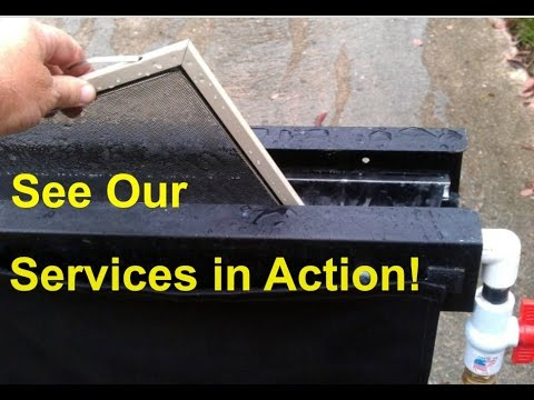 Our Services in Action