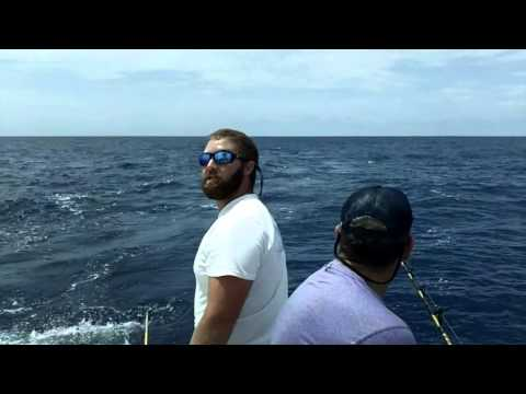 Deep Sea Fishing  Morehead City And Hilton Head