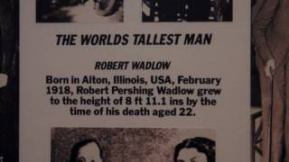 Guinness World Records Museum 4