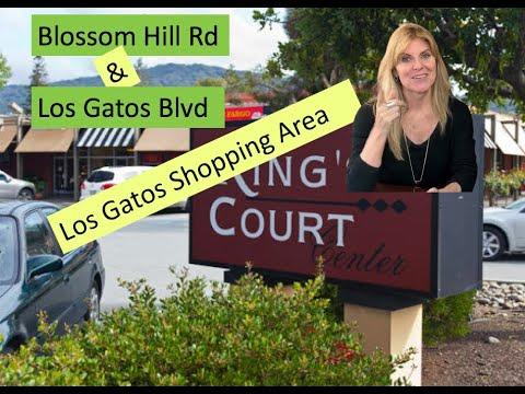 Los Gatos Blvd/Blossom Hill Rd Shopping Areas