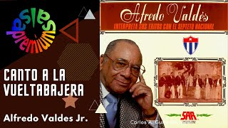 Canto A La Vueltabajera Por Alfredo Valdes Jr. - Salsa Premium
