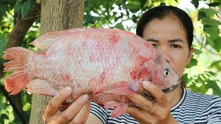 Amazing Cooking Fried Spicy Red Fish Delicious Recipe  -  Red Fish Recipes  -  Primitive Technology