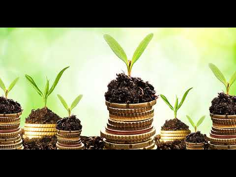 Powerful Wealth Frequency + Subliminal + Mantra + Clearings + Ho'oponopono