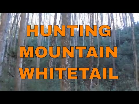 Deer Hunting The Mountains