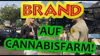 Großbrand auf Cannabisfarm! / Interview mit Polizei | NXT LVL News