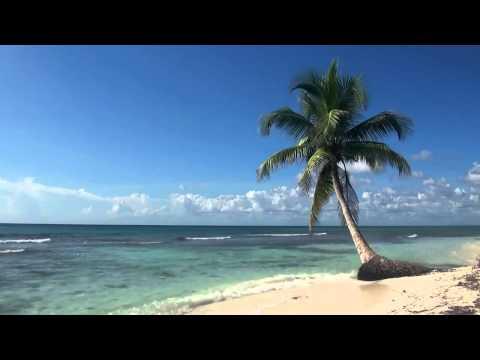 My Tropical Island Beach