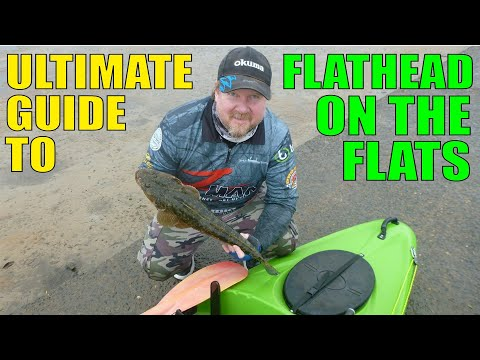 How To Catch Flathead - The Ultimate Guide To Fishing Soft Plastics On The Flats