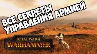 Управление армией 🏆 Total War Warhammer